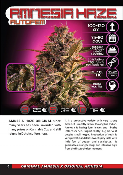 Amnesia Haze AUTOFEM package image