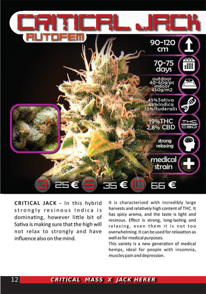 Critical Jack package photo